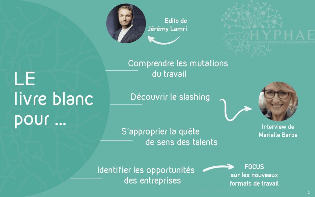 livre-blanc-hyphae-jeremy-lamri-marielle-barbe-future-of-work